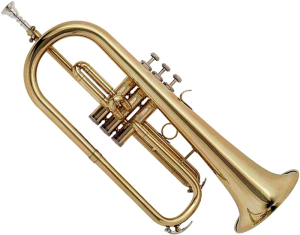 fluegelhorn_transparent