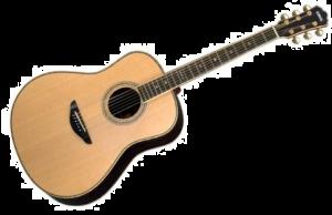 gitarre_transparent